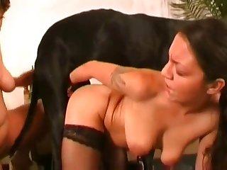 2 Girls 1 Dog