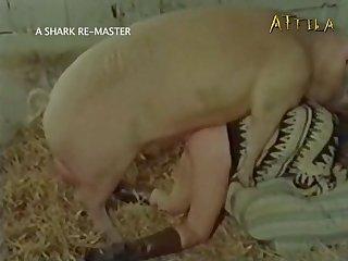 Amateur Dog porn Sexfest 2